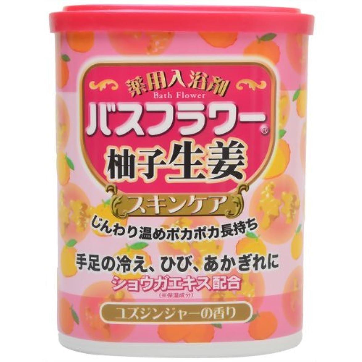 地味な余計な石のバスフラワー 薬用入浴剤スキンケア柚子生姜 680g