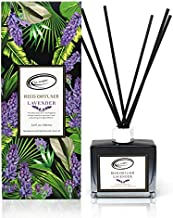 Air Jungles Lavender Scent Reed Diffuser Set with Sticks, Essential Incense Oil Air Freshener for Bathroom, Office, Gym, and Bedroom Fragrance, 3.4 fl. oz