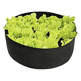 "15-Gallon Raised Bed, Round Grow Bag Diameter 24"" Height 8"" Made of Growth Friendly Felt for Nursery Garden and Planting Grow (Black) 1 DURABLE: Made of a friendly felt material, a highly durable, UV resistant, non-woven fabric that provides exceptional air flow throughout the soil and root systems and allows excess moisture to easily drain away. ROOT BENEFICIAL SYSTEM: Provides ideal drainage and aeration. Encourages ""root pruning"" for a healthier root system. GOOD FOR PLANTS: Warms quickly in the spring, releases excess heat in the summer and provides excellent drainage for healthy plants."