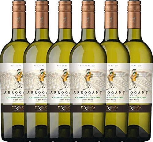 VINELLO 6er Weinpaket Weißwein - Ribet Blanc Chardonnay Viognier 2019 - Arrogant Frog mit Weinausgießer | trockener Weißwein | französischer Wein aus Languedoc | 6 x 0,75 Liter