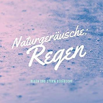 Naturgeräusche: Regen: Regen und Sturm Geräusche, Regen am Fenster