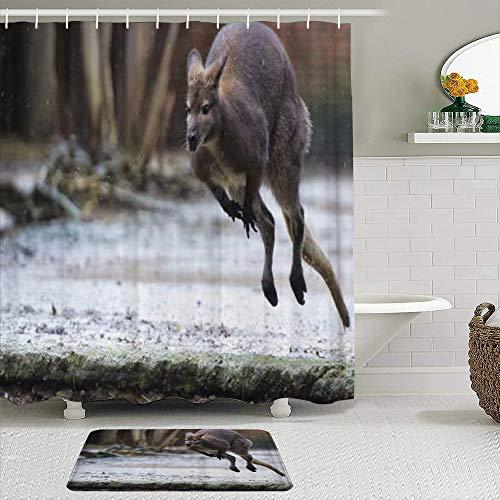 Ngkaglriap Juegos de Cortinas de baño con alfombras Antideslizantes, Creativo Lindo Oso de Koala y Viajero Canguro,con 12 Ganchos