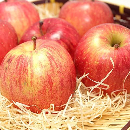 【訳あり】ふじ 3kg箱 特別栽培 (青森県 田村りんご農園) 産地直送 ふるさと21