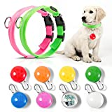 YUWU LED Light Up Dog Collars, Colorful Charm Large Medium Small Pet Cats Accessories Lights for Night Walking, Waterproof Safety Emergency Clip-on Led with Carabiner for Camping Gear Bike (10 Pack )