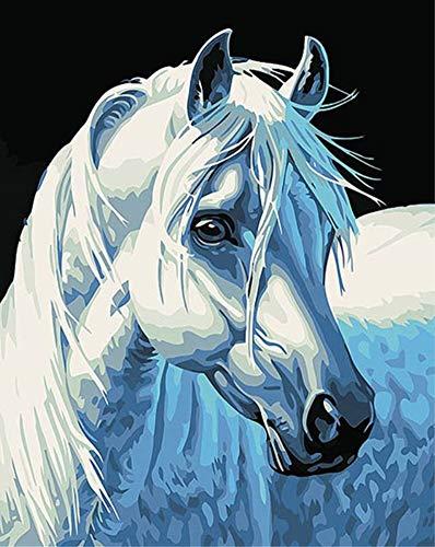 DIY Malen nach Zahlen für Erwachsene Junior Kinder, ABEUTY Pferdekopf Tier 40x50cm Weihnachten Valentinstag Geschenk