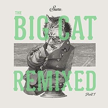 The Big Cat (Remix), Pt. 1