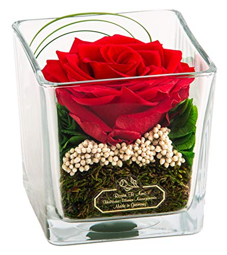 Rosen-Te-Amo, 1 Rosa eterna Premium roja en Maceta de Vidrio. Arreglo Floral Hecho a Mano con follaje Decorativo 100% Natural. Flores preservadas: Ideas Regalos para San Valentín o Regalos Navidad