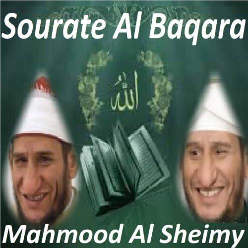 Mahmood Al Sheimy