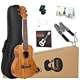 Top 10 Concert Ukulele with Straps