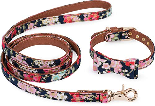 Puccybell Blumen Hundehalsband mit Schleife und Hundeleine (1,2m) im Set, Halsband mit Fliege und Leine für kleine und mittelgroße Hunde HLS005 (S, Blau)
