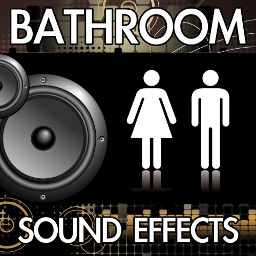 Toilet Flush (Version 8) [Restroom Bathroom Washroom Flushing Noise Clip] [Sound Effect]