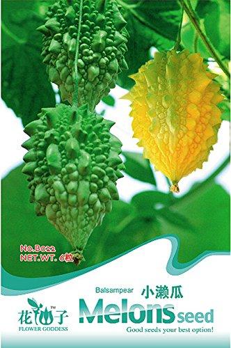 Las semillas originales de embalaje Pitaya, plantas perennes Árboles frutales, Anti-Aging Semillas Fruta blanca del dragón alrededor de 40 Partículas