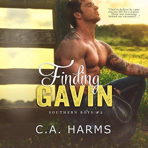 Finding Gavin cover art