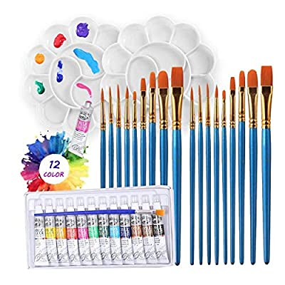 Paint Brush Set,21 Pieces Round Pointed Tip Nylon Hair Artist Paint Brushes,12 Color Tubes Acrylic Paint Set and 2 Pieces DIY Palette Disc,Acrylic Paint Brushes Set for Drawing Beginner