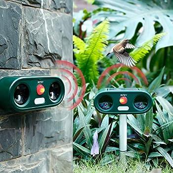 INTEY Répulsif Chat 2 PCS, Répulsif Animaux Haute Puissance et Ultrason Sonore avec LED Lampe, Répulsif Étanche Charge de Solaire ou de Piles, Meuilleur Compagnon pour Jardin