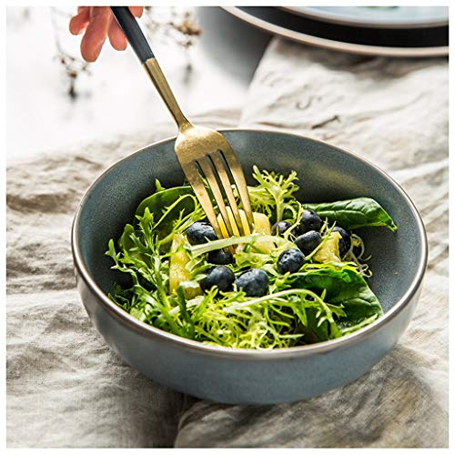 YYF Plat en céramique créatif pour la maison - cuisine occidentale/steak/petit-déjeuner/disque 15 pouces (15,5 cm)
