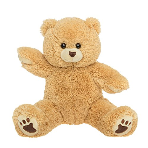 "PERSONAL Recordable Plush 15"" Talking Teddy Bear"