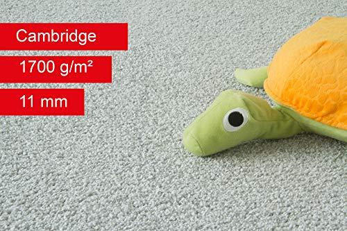 Steffensmeier Teppichboden Cambridge Meterware | Auslegware für Kinderzimmer Wohnzimmer Schlafzimmer | Grau, Größe: 100x50 cm
