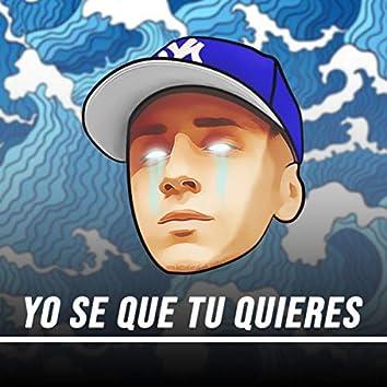 Yo Se Que Tu Quieres (Remix)