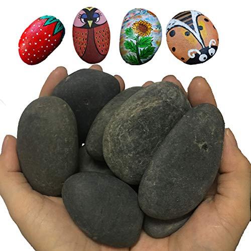juexiyarticle 8 Stücke Flach Steine Groß zum Bemalen,Naturkiesel Dekorativer Malen Kieselsteine Deko,4-8cm