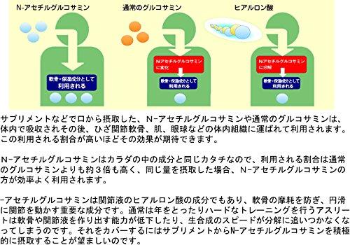 JAY&CO.最高水準1500mgN-アセチルグルコサミンパウダー(レモン,200g)
