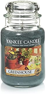 Yankee Candle Greenhouse Large Jar Candle, Fresh Scent