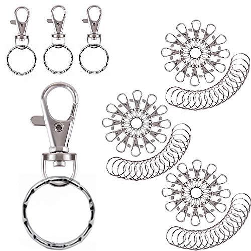 Heatigo 40 Stück Mini Karabiner Schlüsselanhänger,Schlüsselringe mit Kette und Karabiner,25mm Kleine Abnehmbare Drehverschlüsse Schlüsselanhänger Schlüsselclips für Herren Damen
