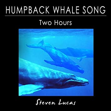 Humpback Whale Song - Two Hours