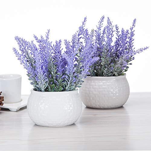 Artificial Mini Potted Flowers Plant Lavender for Home Decor Party Wedding Garden Office Patio Decoration (Ceramics 2set)