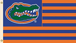 BSI NCAA Florida Gators Flag with Grommets, 3 x 5-Feet