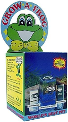 Olympia Sports 11832 Grow-A-Frog Kit by Olympia Sports of Brooksville