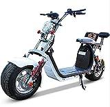 Bicicletas eléctricas, Motocicletas, neumáticos Grandes, Scooters, Scooters eléctricos, Autos Deportivos/Scooters para Adultos/con Asiento, Resistencia Real: 60-80 km/h, 1500 vatios con absorc