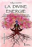 La Divine énergie - Comprendre et connaître les soins énergétiques et karmiques
