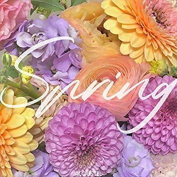 다시, 봄