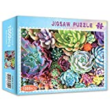 Sweet Succulents Puzzle 1000 Pieces Jigsaw Puzzle for Kids Adults