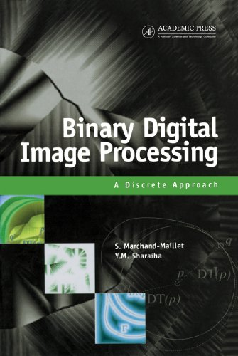 Binary Digital Image Processing: A Discrete Approach (English Edition)