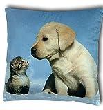 Vinnemeier Kissen Dekokissen Zierkissen Tiermotiv Fotodruck Katze Hund Hase Pferd 40x40cm (Katze +...