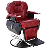 Barber Chair Reclining-Swivel Hydraulic Salon Chairs for Hair Stylist All Purpose Beauty Barber Salon Chair (Recliner Barber Chair)