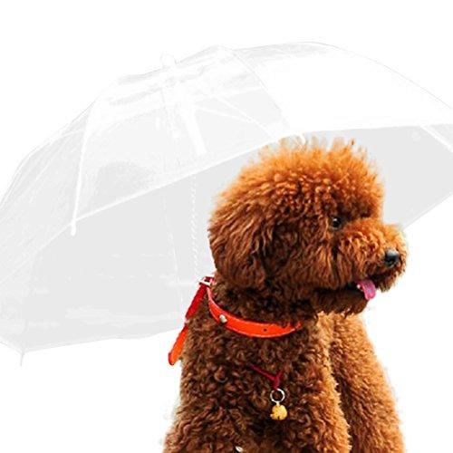 Cosanter 1x Paraguas Transparente Paraguas para Perro Dog Raincoats Traction Rope Con...