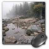 3dRose LLC 8 x 8 x 0.25 Inches Shore of Jordan Pond Acadia National Park Maine Raymond Klass Mouse Pad (mp_90769_1)