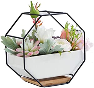ATEYC Peihua Artificial Plants Indoors,Nordic Style Ceramics Creative Simulation Succulents Potted Plant, Wrought Iron Office Desktop Fake Flowers Greenery Decorations Ornaments (Color : Black)