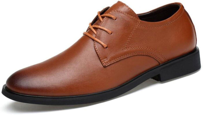 ZLLNSPX Mens Simple Dress Schuhe Wies Schuhe Schnürschuh