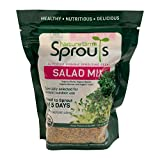 Nature Jim's Sprouts Salad Sprout Mix - Organic Salad Mix for Growing - Non-GMO Microgreen Seeds - Healthy Broccoli, Alfalfa, Radish, Clover Sprouting Seeds Variety Mix - Microgreens Growing 1lb