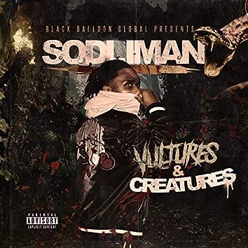 Vultures & Creatures