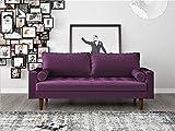Container Furniture Direct S5458 Mid Century Modern Velvet Upholstered Tufted Living Room Sofa, 69.68', Eggplant