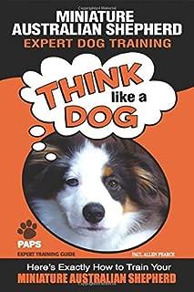 MINIATURE AUSTRALIAN SHEPHERD Expert Dog Training: