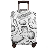 Travel Suitcase Protector,Vegetable Hand Drawn Vegetarian Set of Farm Market Products Detailed Organic Food Drawing Great c,Suitcase Cover Washable Luggage Cover S