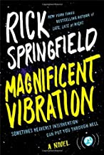 Magnificent Vibration: A Novel