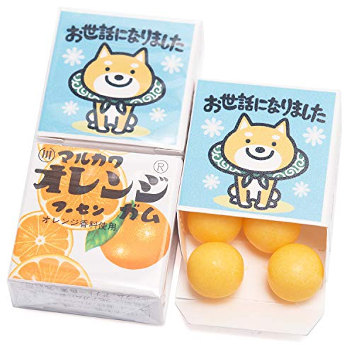 吉松 マルカワガム [ お世話になりました 柴犬 / オレンジ ] 24個入 挨拶 お礼 感謝 退職 メッセージ お菓子 プチギフト ( 個包装 )