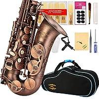 Glory High Grade Antique finish series PR1 E Flat Alto Saxophone with 11reeds8 Pads cushionscasecarekit [並行輸入品]